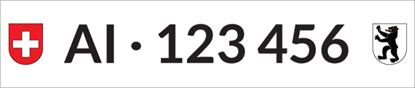 Bild von Nummernschild Individuell AI
