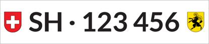 Bild von Nummernschild Individuell SH