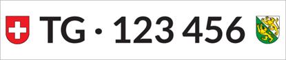 Bild von Nummernschild Individuell TG