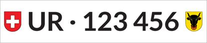 Bild von Nummernschild Individuell UR